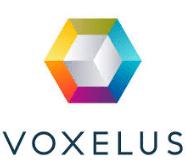 voxels kopen